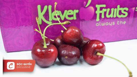 Klever: Cherry jumbo Mỹ đầu mùa