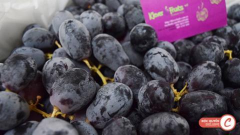 Klever Fruits: Giá sốc nho đen